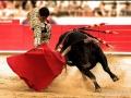 西班牙国粹之斗牛