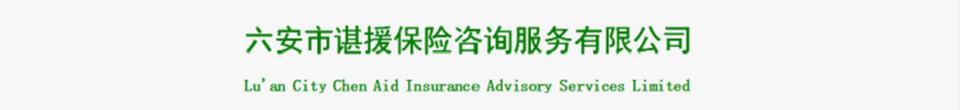 六安市谌援保险咨询服务有限公司
