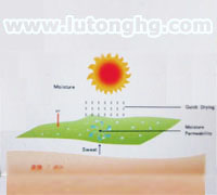3M吸湿排汗效果图