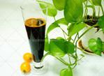 茶皂素液体 优质日用高效茶皂素液体提取 精制日化茶皂素价格实惠 用途广泛